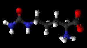 Citrulline-3D-balls